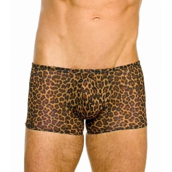Cheetah хипстеры плавки пропускающие загар Kiniki